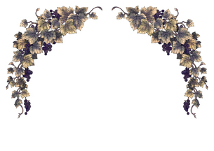 葡萄のイラストのフレーム(黒線)のイラスト素材 [FYI04117693]