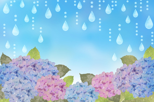 あじさいと雨のイラスト素材 [FYI04117705]