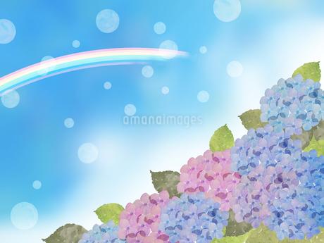あじさいと虹のイラスト素材 [FYI04117706]