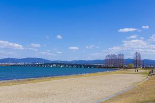 琵琶湖畔なぎさ公園風景の写真素材 [FYI04117741]