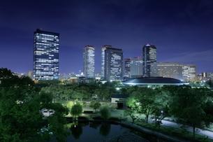 大阪城公園から大阪ビジネスパークの夜景の写真素材 [FYI04117897]
