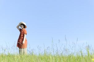 草原の中に佇む帽子の女性の写真素材 [FYI04117985]