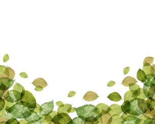 葉っぱの背景イラストのイラスト素材 [FYI04118285]