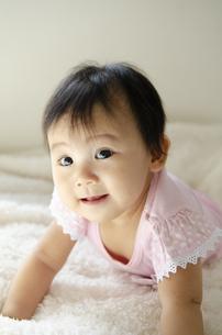 ベッドでハイハイしている赤ちゃんの写真素材 [FYI04118305]