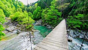 映画のロケ地にもなった細いワイヤーと木製の小さなつり橋、見倉橋の写真素材 [FYI04118504]