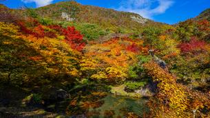 赤、黄色、オレンジとカラフルに色づく秋の山、紅葉山と鏡池の写真素材 [FYI04118506]