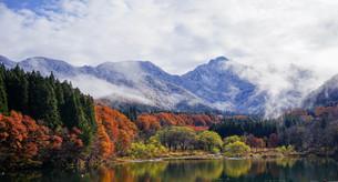 冠雪の大源太山と紅葉のリフレクションが美しい大源太湖。晩秋と初冬が同居する雪国湯沢。の写真素材 [FYI04118576]