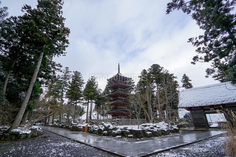 雪の降った朝の神社仏閣めぐり、佐渡阿仏房妙宣寺の五重塔の写真素材 [FYI04118586]