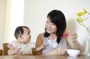 離乳食を食べさせている母親の写真素材 [FYI04118606]