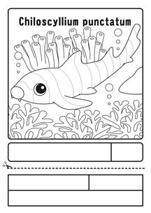 イヌザメ 塗り絵 応募用紙のイラスト素材 [FYI04118678]