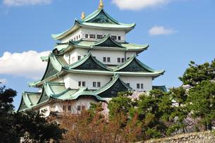 青空に映える名古屋城天守閣の写真素材 [FYI04118713]