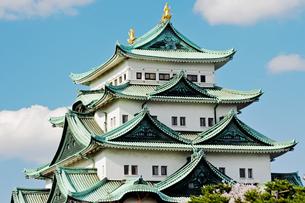 青空に映える名古屋城天守閣の写真素材 [FYI04118714]