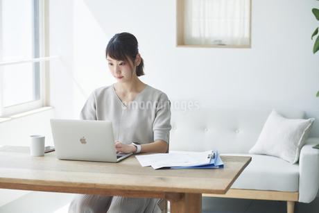 仕事をする女性の写真素材 [FYI04119185]
