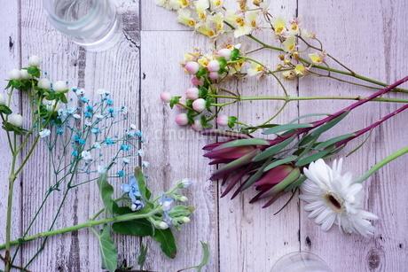 花の写真素材 [FYI04119601]