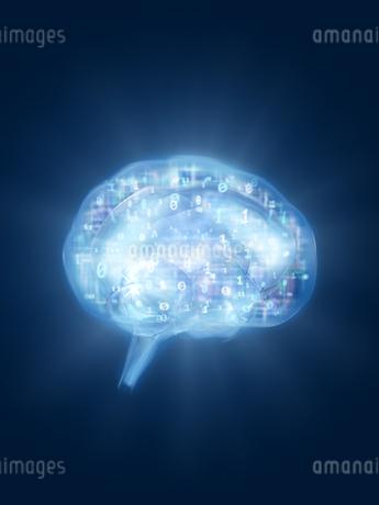 回路と数字を内包する脳のイラスト素材 [FYI04119698]