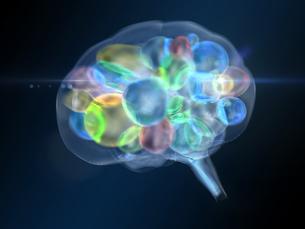 透明でカラフルな球状体を内包する脳のイラスト素材 [FYI04119700]