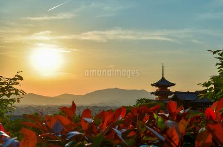 京都 八坂の塔の写真素材 [FYI04119732]