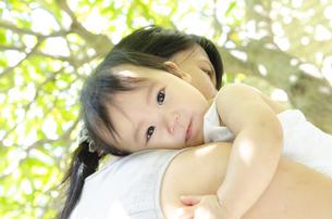 木の下で抱っこされている赤ちゃんとお母さんの写真素材 [FYI04119844]