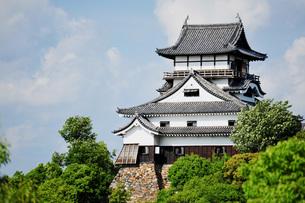 国宝犬山城の写真素材 [FYI04119984]