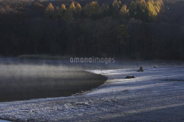 朝陽の写真素材 [FYI04120244]