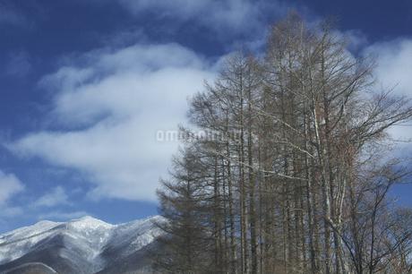 雪山の写真素材 [FYI04120257]