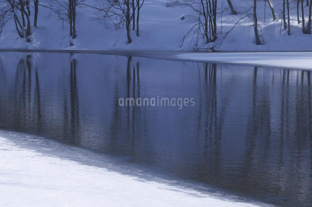 冬の乙女沼の写真素材 [FYI04120267]