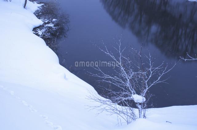 池と雪の写真素材 [FYI04120274]