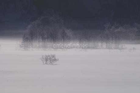 秋元湖の朝の写真素材 [FYI04120277]