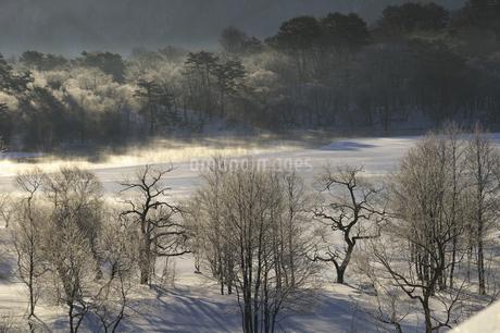 小野川湖の朝の写真素材 [FYI04120290]