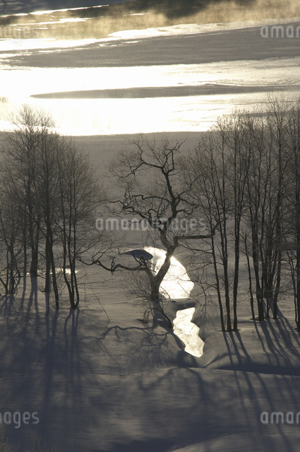 小野川湖の朝の写真素材 [FYI04120291]