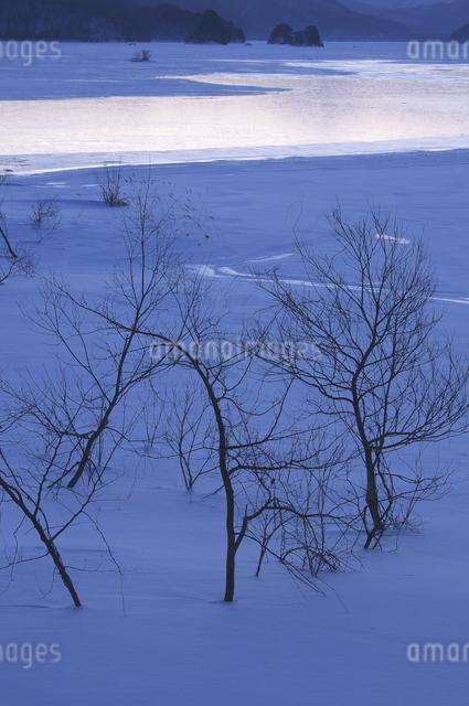 秋元湖の朝の写真素材 [FYI04120296]