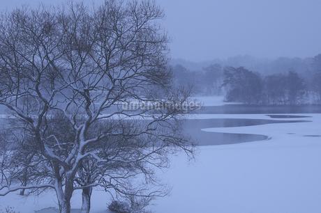 雪の小野川湖の写真素材 [FYI04120302]