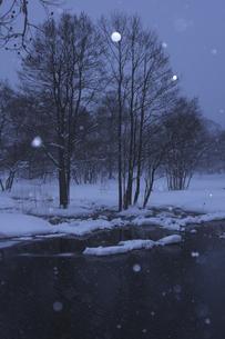 雪が舞うの写真素材 [FYI04120304]