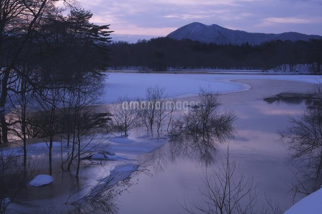 小野川湖の朝の写真素材 [FYI04120312]