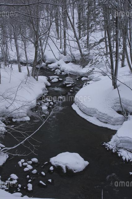 冬の中ノ沢川の写真素材 [FYI04120330]