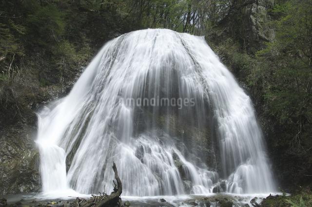大滝の写真素材 [FYI04120350]