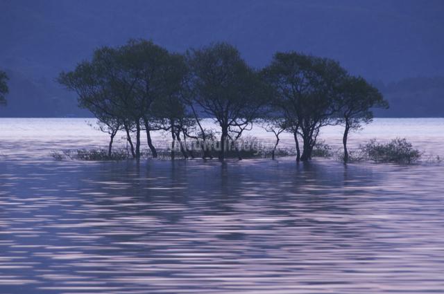 桧原湖の朝の写真素材 [FYI04120381]