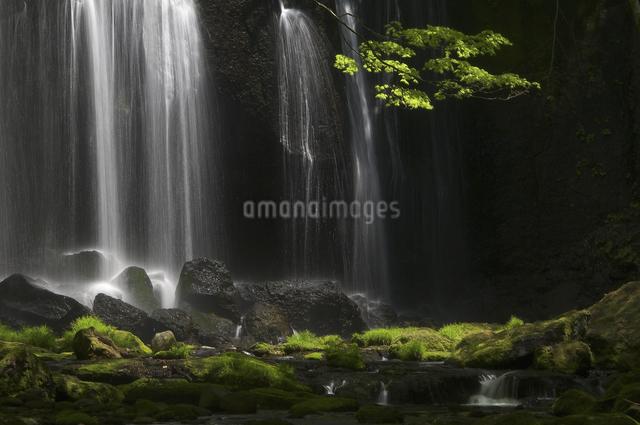 達沢不動滝の写真素材 [FYI04120383]