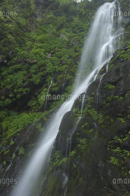 幕滝の写真素材 [FYI04120403]