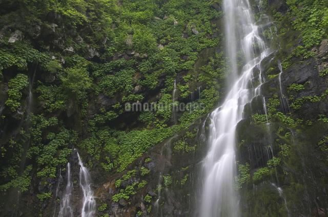 幕滝の写真素材 [FYI04120418]