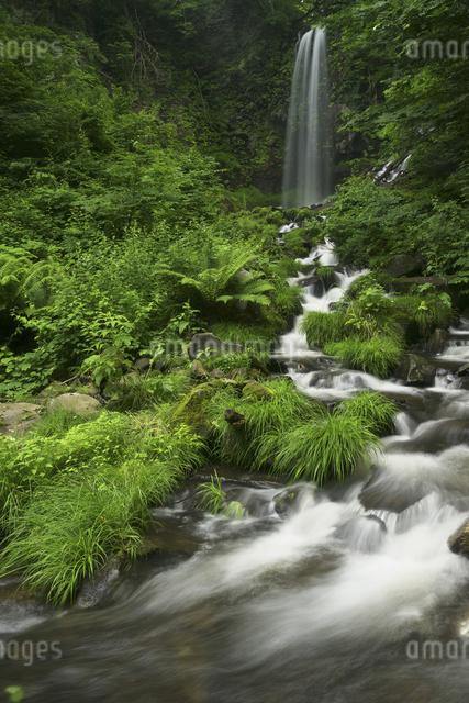 滝と渓流の写真素材 [FYI04120429]