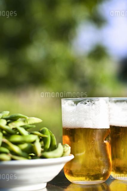 ビールと冷奴の写真素材 [FYI04120559]