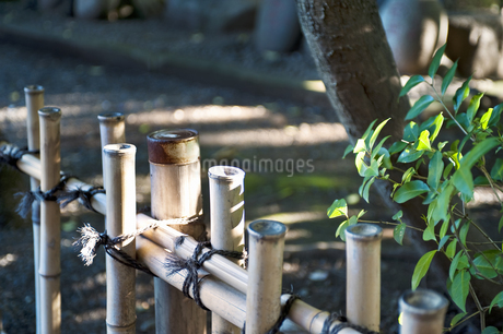 竹垣の写真素材 [FYI04120632]