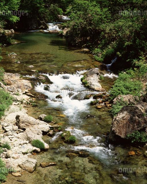 新緑の男鹿川の写真素材 [FYI04120849]