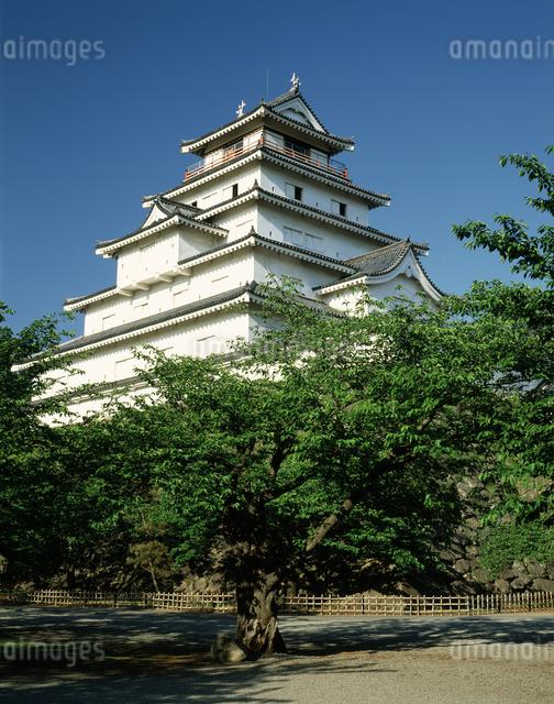 会津,鶴ヶ城の写真素材 [FYI04120958]