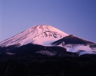 富士山宝永火口の朝焼けの写真素材 [FYI04121145]