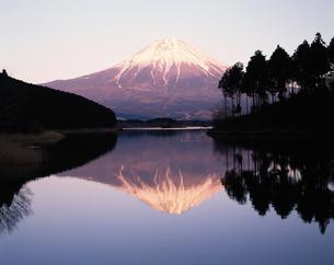田貫湖からの逆さ富士・夕景の写真素材 [FYI04121152]
