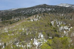 西吾妻山の写真素材 [FYI04121752]