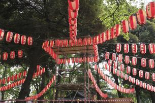 盆踊りの提灯の写真素材 [FYI04122874]
