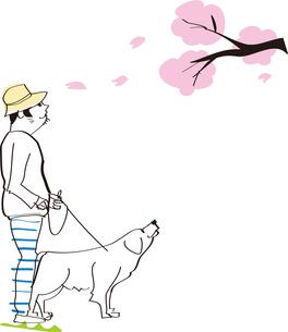 桜 男性 犬 散歩のイラスト素材 [FYI04123156]